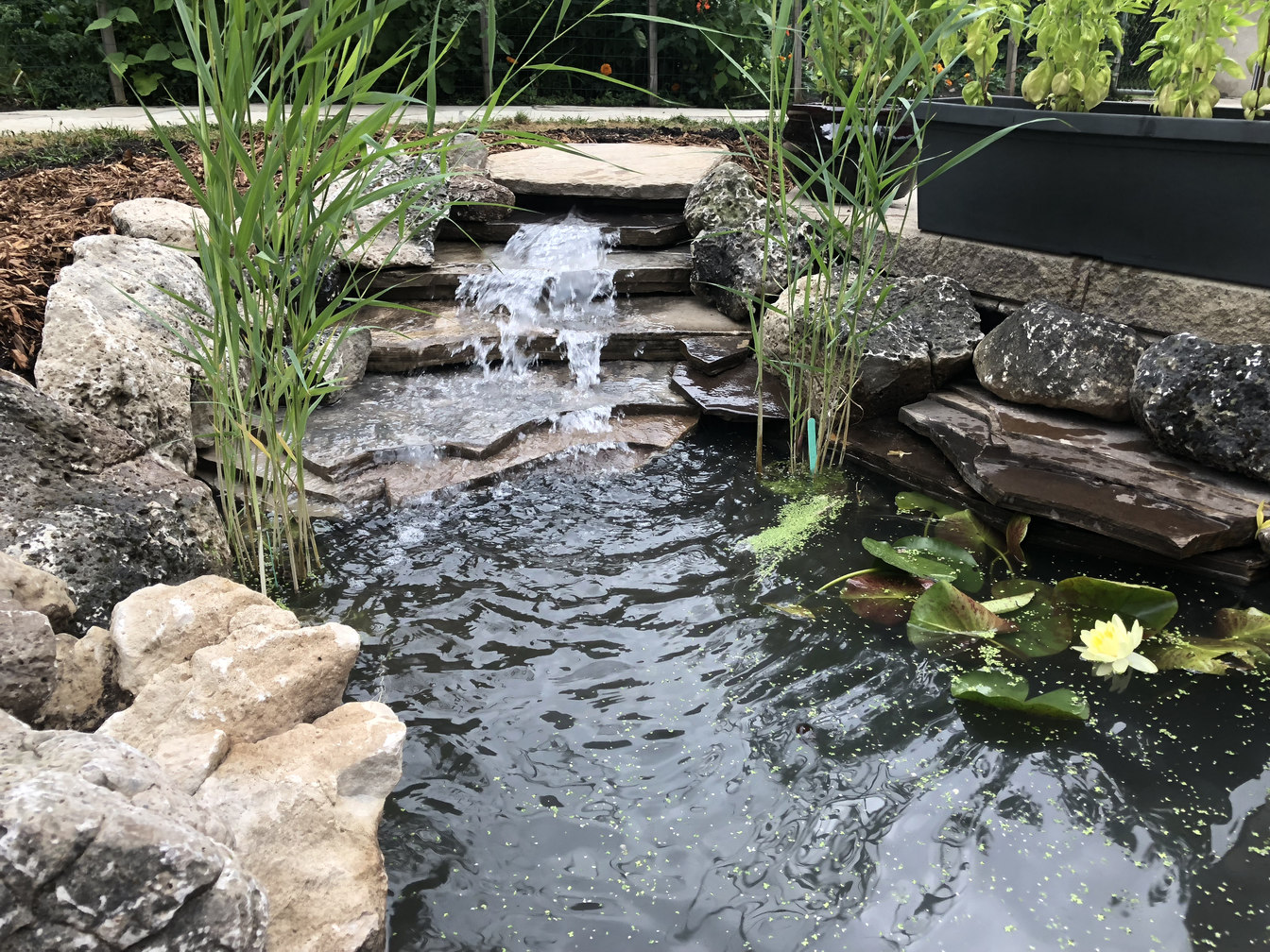 A project in or near London Ontario, by O'Connor Stone & Landscape, a local landscape and hardscape contractor - Water Feature: Planted Fish Pond with Stone Water Fall.